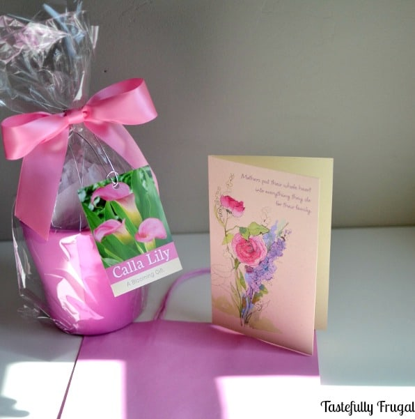 Thank You For Helping Me Bloom Mother's Day Gift: A fun, quick and easy gift idea for that special mom in your life. #BestMomsDayEver #ad #CollectiveBias