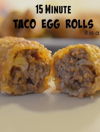 15 Minute Taco Egg Rolls | Tastefully Frugal