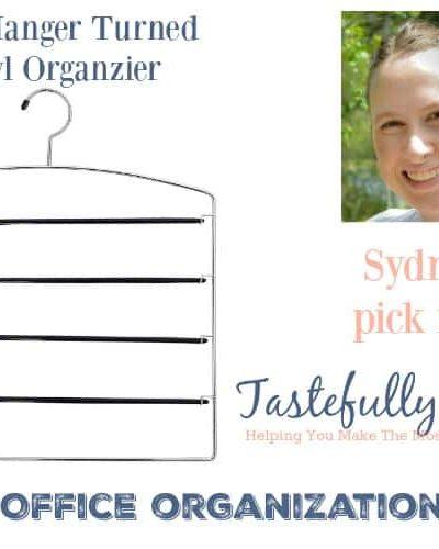 The BEST Organizing Ideas in 2016: Pant Hanger Turned Vinyl Organizer | Tastefully Frugal