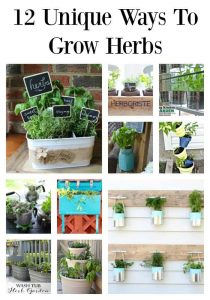 12 Fun, Unique and Budget Friendly Ways to Grow Herbs | Tastefully Frugal