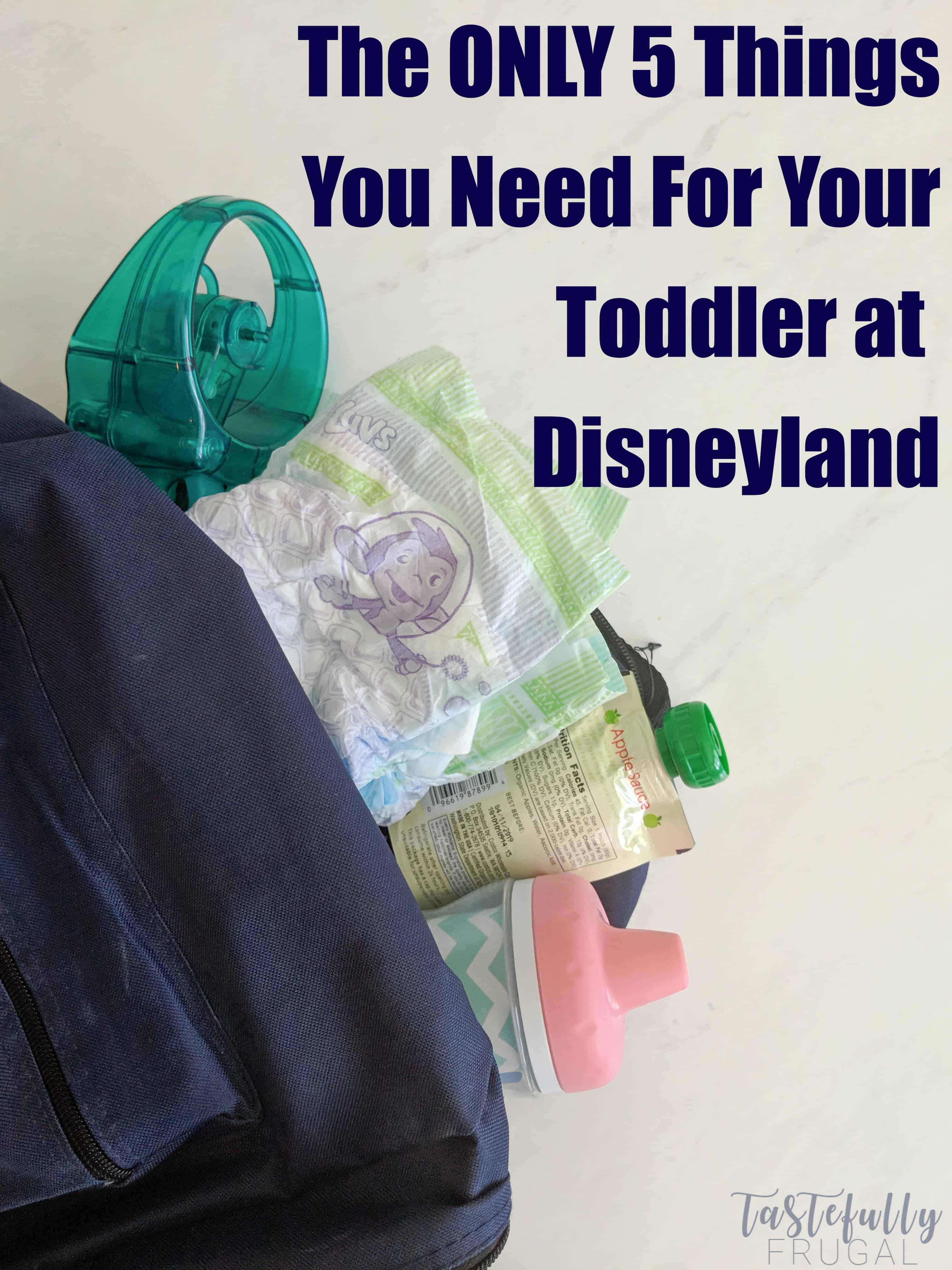 Save your back (and your wallet) by only packing these 5 things for your toddlers when you go to Disneyland